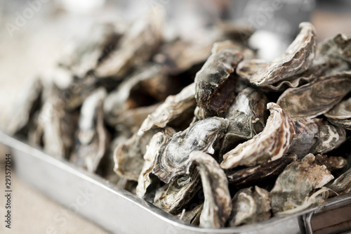 Poster Asia Country Close up of fresh oysters in big plate for sale outdoor