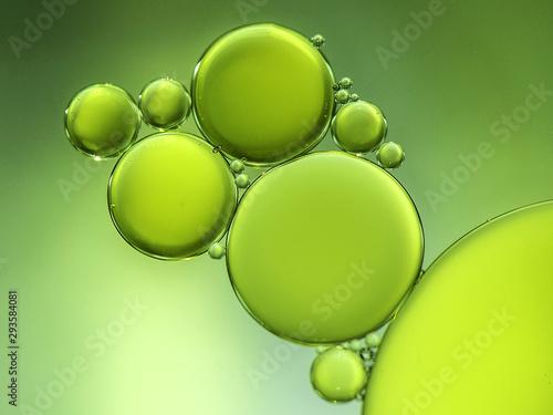 Vászonkép  Green circles