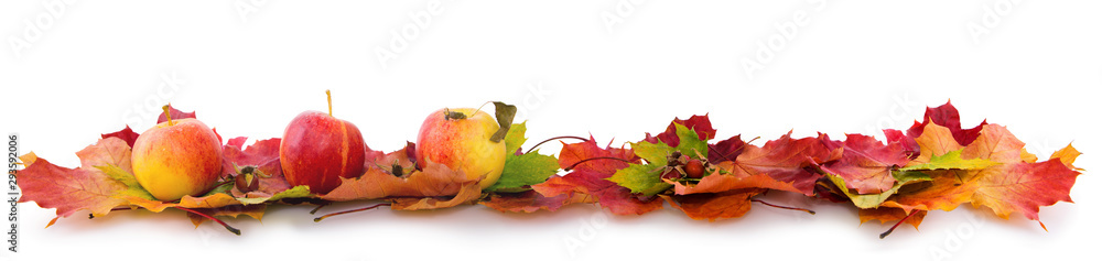 Fototapeta Autumn background with red apples and colorful leaves isolated on white.