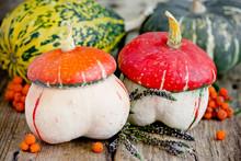 Funny Shaped Pumpkin Like A Mushroom Close Up