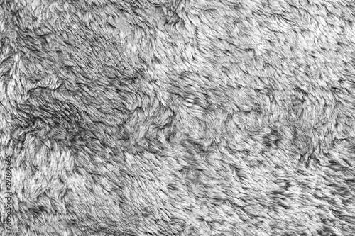 Fotobehang Schapen White natural wool texture background. seamless grey sheep fur. soft plush