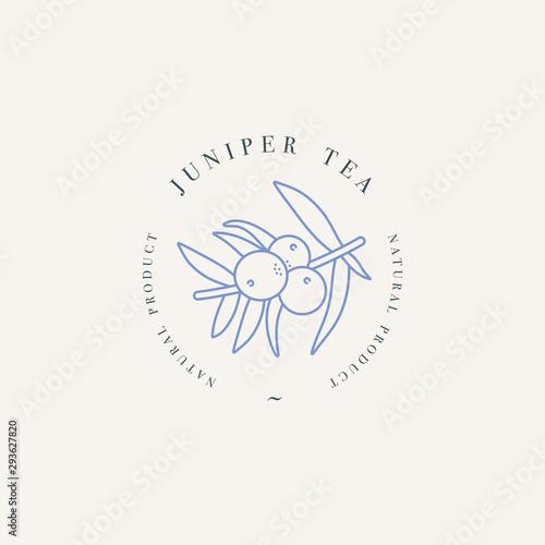 Fototapeta Vector design colorful templat logo or emblem - organic herb juniper tea. Logos in trendy linear style isolated on white background. obraz