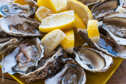 A dozen oysters and a lemon on a plastic plate eating outdoors near the sea Canvas Print