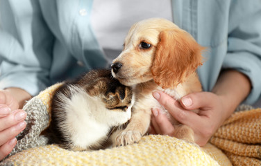 Owner with adorable little kitten and puppy, closeup