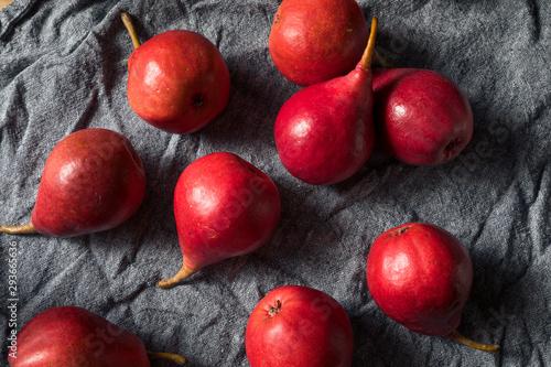 Raw Red Organic Anjou Pears Canvas Print