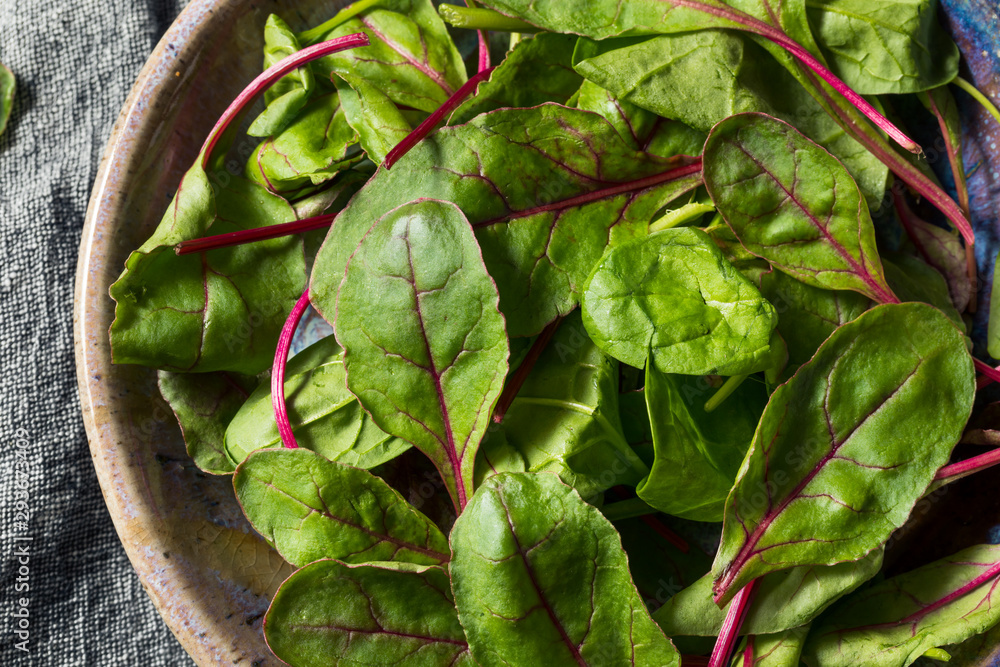 Fototapety, obrazy: Raw Green Organic Baby Beet Greens