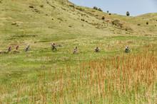 Friends At Matthews Winter Singletrack Mountain Biking Trails In Colorado.