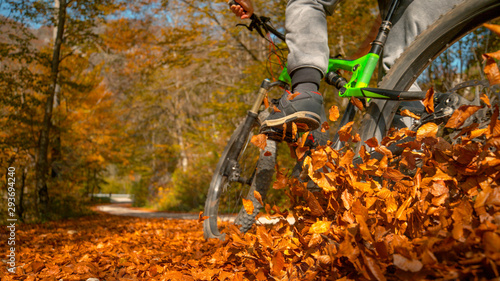 Fotografía CLOSE UP: Unrecognizable man rides mountain bike into a pile of fallen leaves