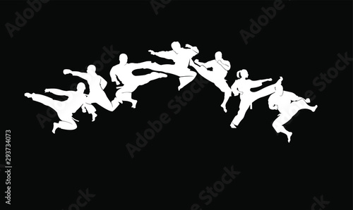 Fotografiet karate silhouette illustration vector template