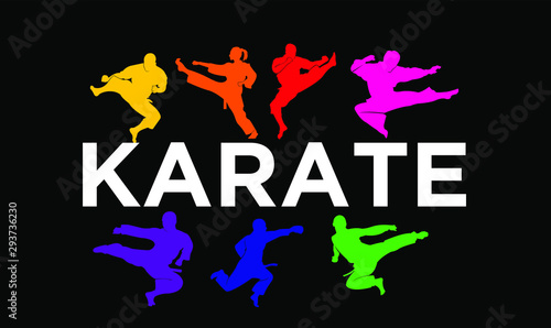 karate silhouette illustration vector template Canvas Print