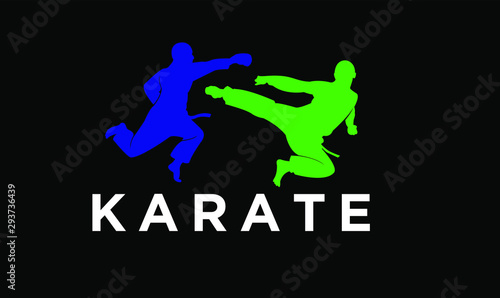Fotografie, Tablou  karate silhouette illustration vector template