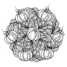 Black And White Autumn Ornament. Pumpkins And Autumn Floral Motifs Coloring Page