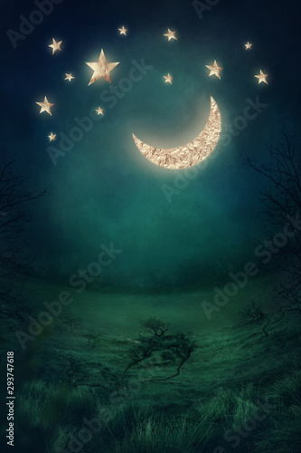 Canvas Print Landscape with golden moon