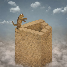 The Cat Climbs The Endless Stairs Of A High Brick Tower That Rises Above The Clouds.