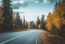 Autumn Road View From Sotkamo, Finland.