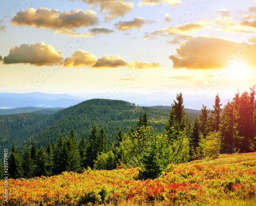 Autumn landscape in National park Bayerischer Wald at sunset, view from the mountain Grosser Arber, Germany Canvas Print