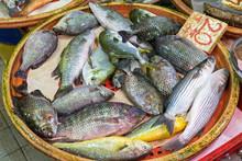 Fish In Basket
