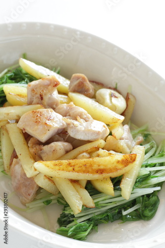 Chinese food, potato and chicken stir fried Wallpaper Mural