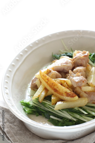 Photo  Chinese food, potato and chicken stir fried