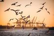 canvas print picture - Hafen Hamburg