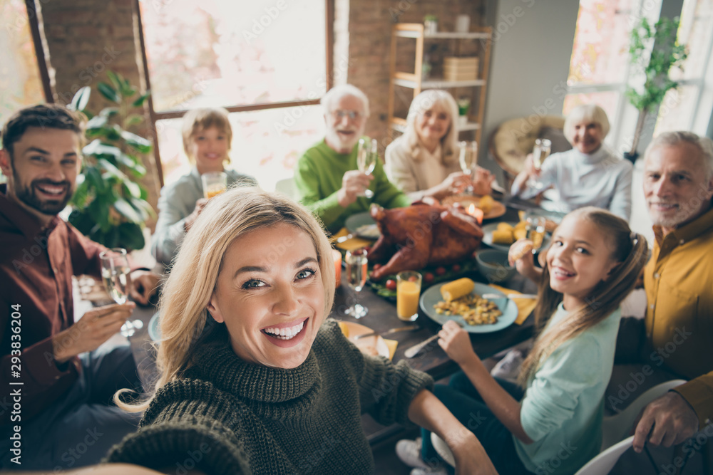 Fototapety, obrazy: Photo of big family sit feast dishes table around roasted turkey multi-generation relatives making group selfies raising wine glasses juice in living room indoors