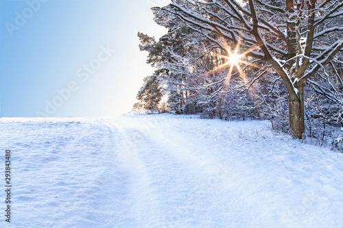 Foto auf Leinwand Eisenbahnschienen Winterlandschaft mit Sonne