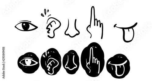 Leinwand Poster Icon set of five human senses