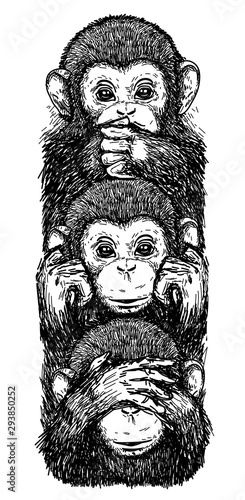 Foto op Canvas Hand getrokken schets van dieren Tattoo art sketch monkeys, ears closed, eyes closed, closed mouth black and white