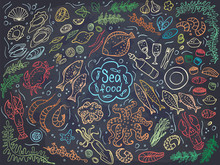 Set Of Colorful Seafood On Chalckboard. Vector Illustration. Perfect For Menu Or Food Package Design.