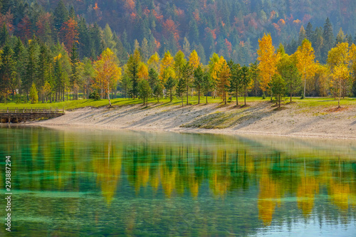 Fotografie, Obraz  Colorful fall colored trees are reflected in the breathtaking emerald lake