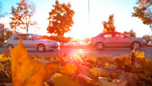 CLOSE UP: Two Cars Drive Past A Pile Of Autumn Colored Leaves And A Car Park.