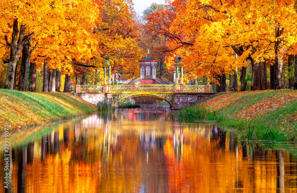 Fototapeta Cross bridge and Chinese bridges in Alexander park in autumn, Pushkin (Tsarskoe Selo), St. Petersburg, Russia