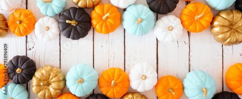 Fall double border banner of colorful pumpkins Fotobehang