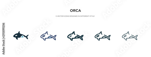 orca icon in different style vector illustration Canvas Print