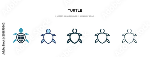 Stampa su Tela turtle icon in different style vector illustration