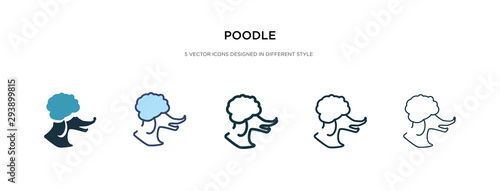 Photographie poodle icon in different style vector illustration