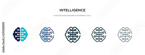 Obraz intelligence icon in different style vector illustration. two colored and black intelligence vector icons designed in filled, outline, line and stroke style can be used for web, mobile, ui - fototapety do salonu