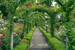 A path through the rose garden at Butchart Gardens