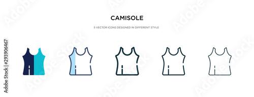 Fotografia, Obraz camisole icon in different style vector illustration