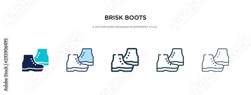 Fényképezés brisk boots icon in different style vector illustration