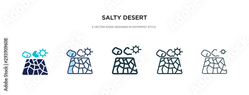 Fotomural salty desert icon in different style vector illustration
