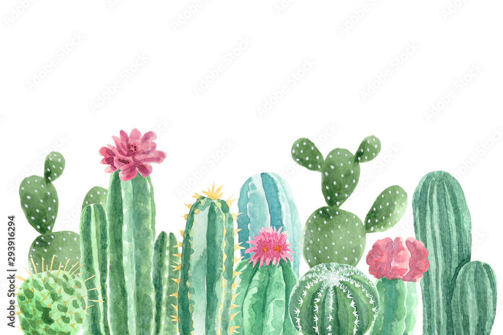 Fototapeta Watercolor Cacti and Succulents