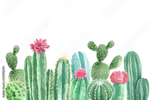 Fotografiet Watercolor Cacti and Succulents