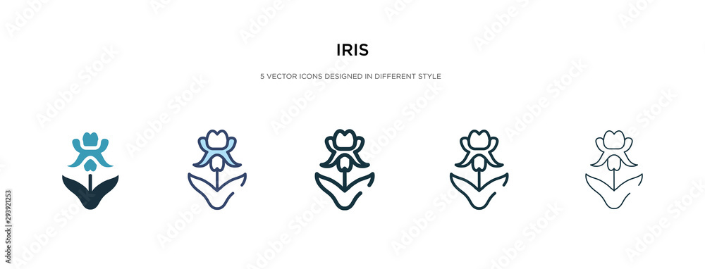 Fototapeta iris icon in different style vector illustration. two colored and black iris vector icons designed in filled, outline, line and stroke style can be used for web, mobile, ui