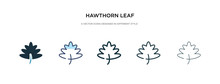 Hawthorn Leaf Icon In Different Style Vector Illustration. Two Colored And Black Hawthorn Leaf Vector Icons Designed In Filled, Outline, Line And Stroke Style Can Be Used For Web, Mobile, Ui