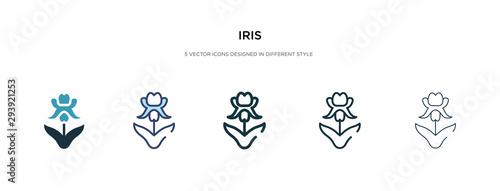 Fototapeta iris icon in different style vector illustration