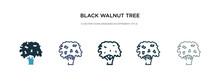 Black Walnut Tree Icon In Diff...