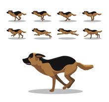 German Shepherd Running Side C...