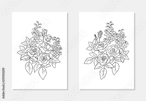 vector  floral rose delphinium flower leaf bouquet coloring page line art outlin Fototapet
