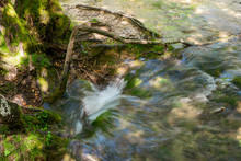 Pure Fresh Water Of A Small Creek Disappearing Into A Hole In The Ground Beneath A Tree In The Forest At The Plitvice Lakes National Park In Croatia